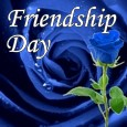 Blue Rose Of Friendship.