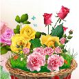 A Basket Of Roses!