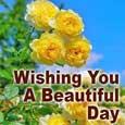 Wishing You A Morning So...