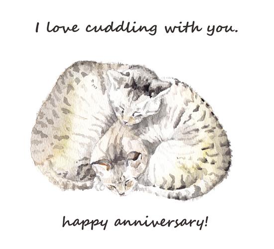 Anniversary - Cuddling Cats.