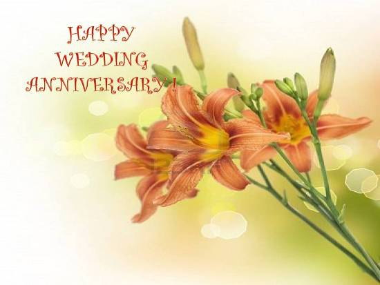 Anniversary Wishes For You...