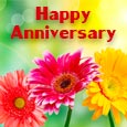 Best Wishes On Anniversary!