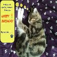 Sleeping Kitty Birthday Wish.