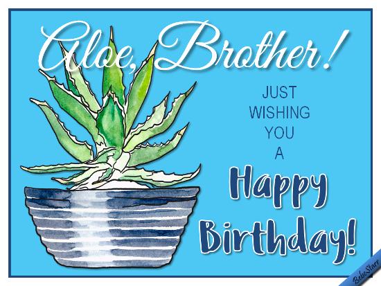 Aloe, Brother!