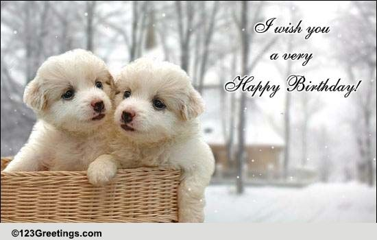 Birthday For Brother U0026 Sister Cards, Free Birthday For Brother U0026 Sister  Wishes | 123 Greetings