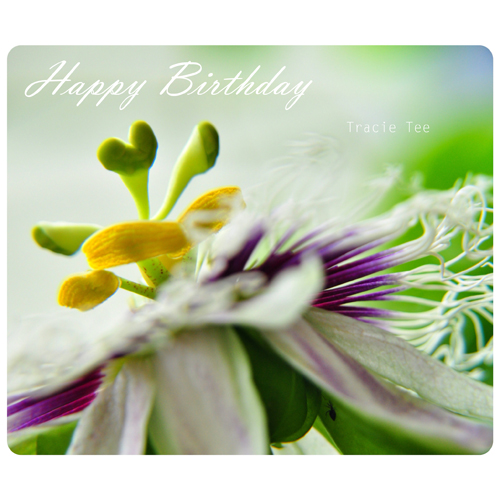 Have a wonderful birthday free flowers ecards greeting cards 123 have a wonderful birthday bookmarktalkfo Image collections