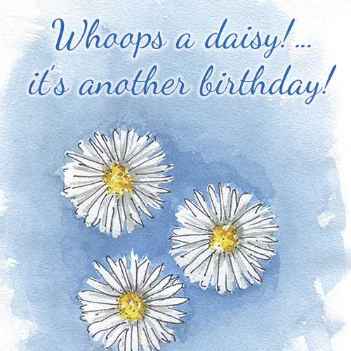 A Daisy! It's Another Birthday!
