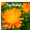 Happy Birthday With Flower.