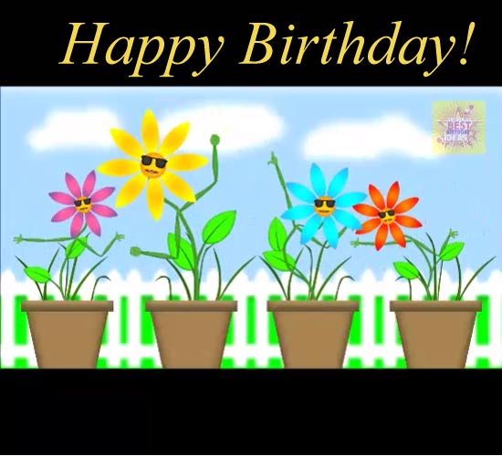 Funny Flowers Singing Happy Birthday. Free Flowers ECards