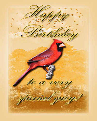 Cardinal Birthday For Him Free ECards Greeting Cards