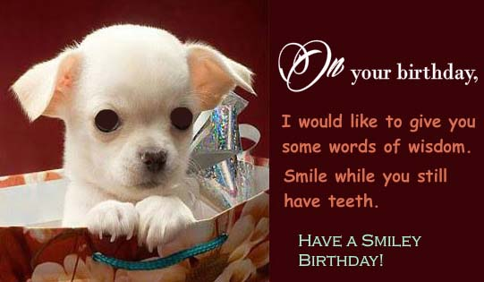 Some Words Of Wisdom Free Funny Birthday Wishes Ecards
