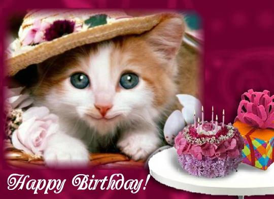 Birthday Singing Kitten Free Funny Wishes ECards