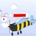 Happy Birthday Aviation Style.