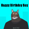 Happy Birthday Boy Cat
