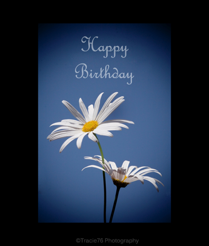 Birthday wishes free happy birthday ecards greeting cards 123 birthday wishes m4hsunfo Gallery