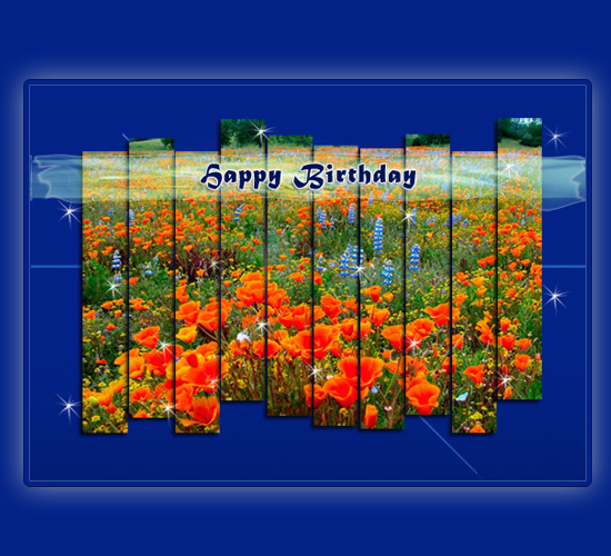 Red Poppies On Your Birthday.