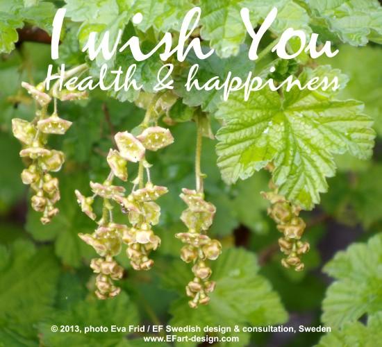 I Wish You Health & Happiness.