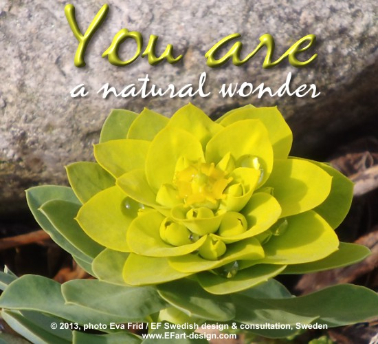 You Are A Natural Wonder.