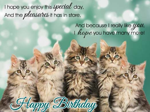 Crush image inside free printable cat birthday cards