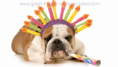 Funny Birthday Bulldog...