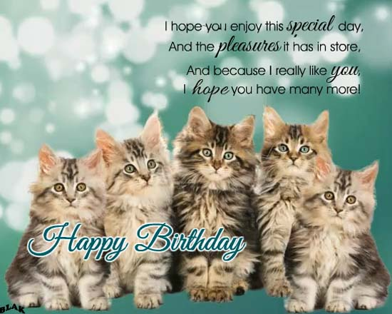 Kitties Birthday Song Free Happy Birthday Ecards