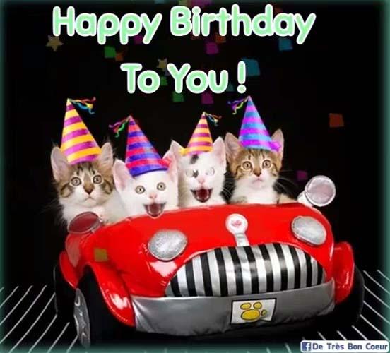 kittens singing happy birthday free happy birthday ecards