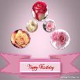 Happy Birthday With Roses.