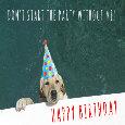 Happy Birthday Labrador.