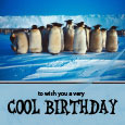 Funny Cool Birthday Card With Penguins.