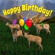 Happy Birthday Deer Herd.