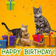 Home : Birthday : For Kids - Happy Birthday With Cats...