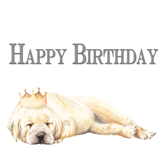 Birthday Puppy With Festive Crown Free Pets Ecards Greeting Cards
