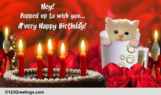 happy birthday  free pets ecards  greeting cards