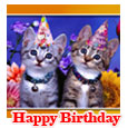 Home : Birthday : Pets - Cute Cats...