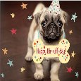 Puppy Birthday Wishes.
