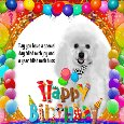 Home : Birthday : Pets - A Cute Birthday Card For Your Pet.