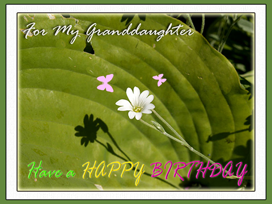 For My Granddaughter Free Son Daughter ECards Greeting Cards