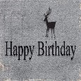 Happy Birthday To Son Walking Deer.