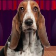 Home : Birthday : Songs - Happy Birthday Hound Dog!