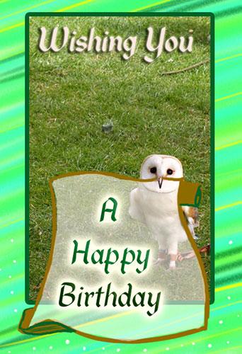 A Happy Birthday Owl Free Birthday Wishes Ecards Greeting Cards