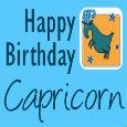 Happy Birthday Classy Capricorn!