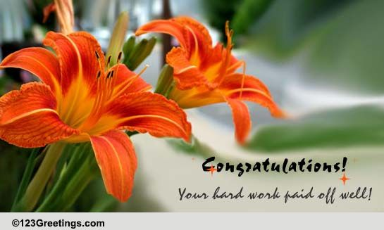 Send Congratulations Greetings!