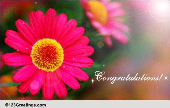 congratulations with flowers  free new baby ecards  greeting cards