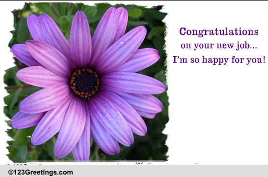 i u0026 39 m so happy for you  free new job ecards  greeting cards