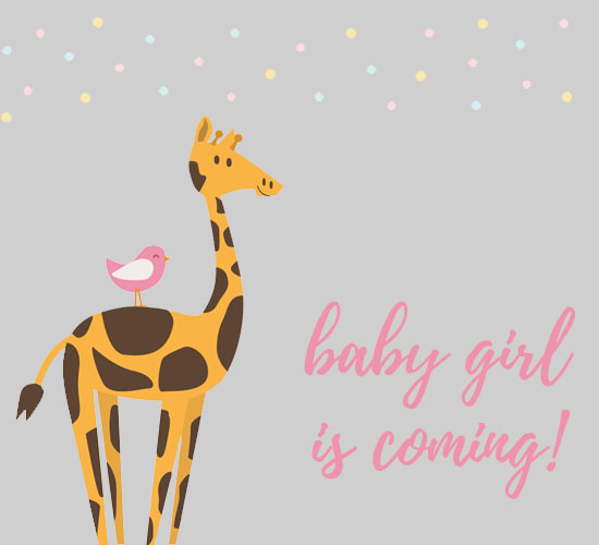 Baby girl born free pregnancy ecards greeting cards 123 greetings free pregnancy ecards greeting cards 123 greetings m4hsunfo