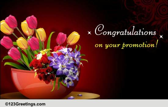 congratulations on success  free promotion ecards