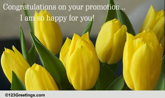i am so happy for you  free promotion ecards  greeting