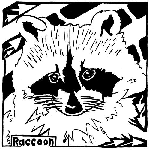 Raccoon Maze.
