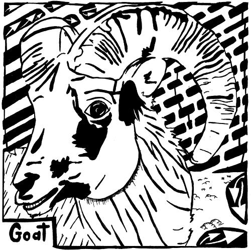Cute Goat.