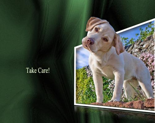 Take Care.